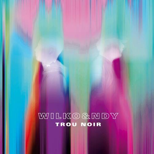 WILKO & NDY - TROU NOIR EP