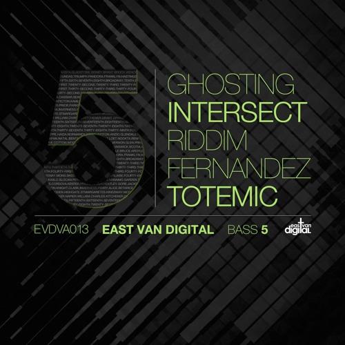 Ghosting - Indigo Distortions