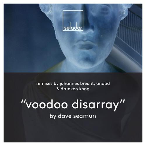 PREMIERE: Dave Seaman - Voodoo Disarray (Johannes Brecht Remix) [SELADOR]