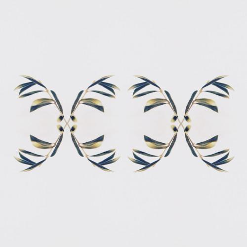 A TU (de cada gota )_Dabú