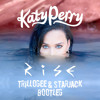 Katy Perry Rise Trillogee And Starjack Remix Mp3