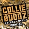 Collie Buddz - Come Around (Yatuza x Dvekz Bootleg )Free Download
