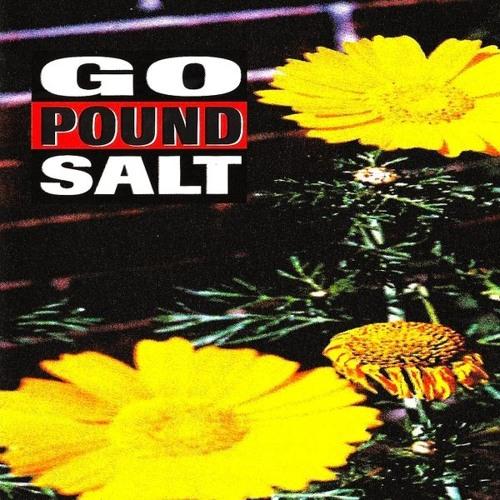 Go Pound Salt - Build It Back