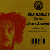 Bob Marley Special on Dread Radio [Lion Twin]