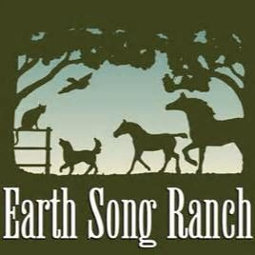 Holistic Horse on Laminitis with Earth Song Ranch September 2, 2017