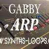 Synths Loops : Arp Gabby 140 bpm CM7/F keys Extrait