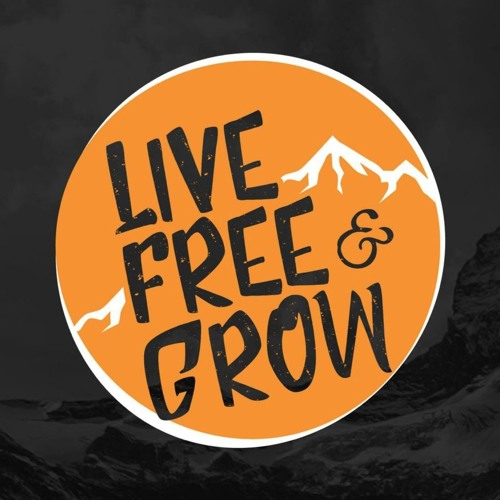 Live Free & Grow #3- King Of The Bees