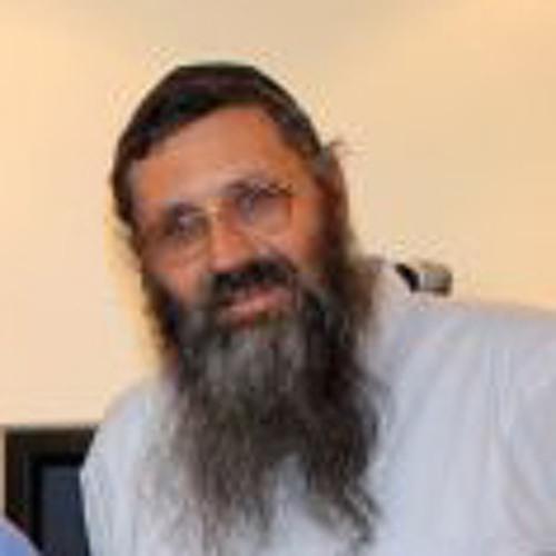 הרב מיכאל אברהם - דיני חלוקה