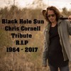 Somatic Cell - Black Hole Sun (Tribute to Chris Cornell) - Full Version
