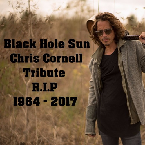 Somatic Cell - Black Hole Sun (Tribute to Chris Cornell ) - FREE DOWNLOAD