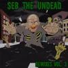 Seb the Undead - The Saga Begins (Remix)