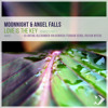 Moonnight & Angel Falls - Love Is the Key (Dj Artak Remix)