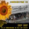 deepdeep @ SonneMondSterne XXI - SonneBlumenGerne 2017 Music Camp