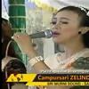 Ditinggal Rabi Voc. Fero Adena - OM. ZELINDA Live Bangsri Gede HUT RI 72 ( 160kbps ).mp3