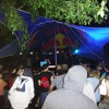 Forest Electronic Music Festival 02/09/2017