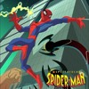 The Spectacular Spiderman theme song
