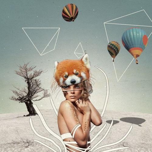 Techno Roots Flower Fox Mix (19.08.2017)