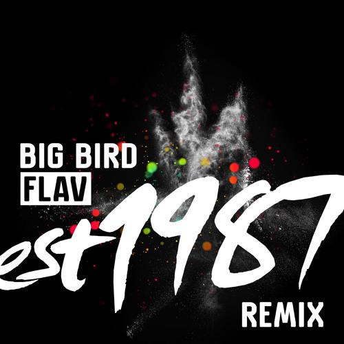 Big Bird - Flav (Est 1987 Remix)