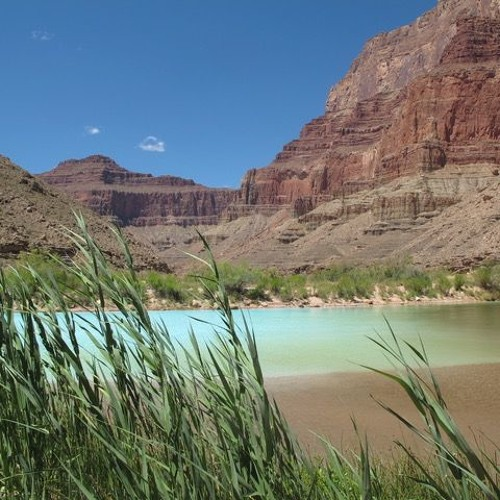 Episode 4: Beauty And Risk In The Grand Canyon