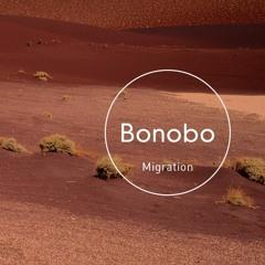 Bonobo - Grains (Side Soul Remix)