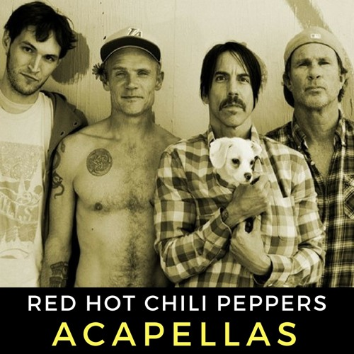 Red Hot Chili Peppers ACAPELLAS Pack **Click BUY for FREE DOWNLOAD