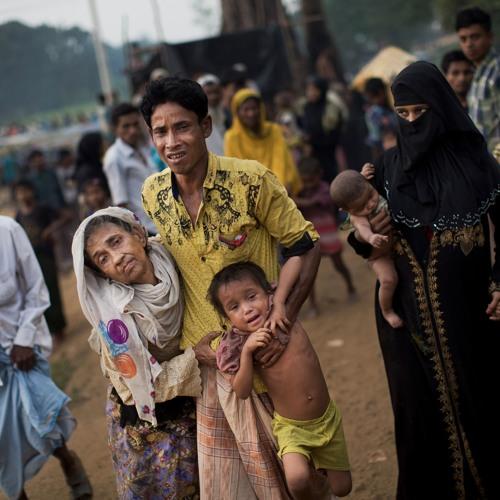 The Rohingya crisis intensifies