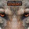 Know Your Enemy: Part 3 (Part 1)