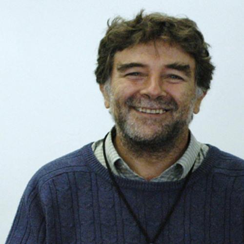 Entrevista a Patricio Felmer - El encanto de las matemáticas