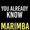 You Already Know Marimba Ringtone - Fergie