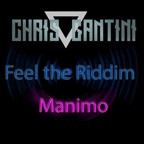 Chris Gantini - Feel The Riddim (Extended Mix)