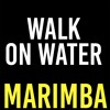 Walk On Water Marimba Ringtone - Thirty Seconds To Mars
