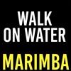 Walk On Water Marimba Ringtone - Thirty Seconds To Mars