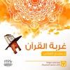 غربة القرآن- الفصل الأول