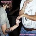 Peach Pit Techno Show Artwork