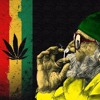✅Snoop Dogg SMOKE WEED EVERYDAY Dubstep Remix (Reupload !!)✅