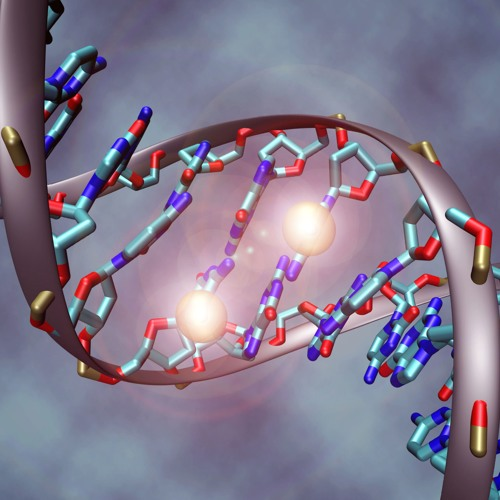 n=20 You're more than what's coded in your DNA