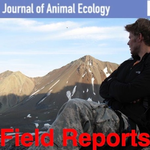 Journal of Animal Ecology: Field Reports, episode 4 Ben Dantzer