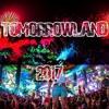 TOMORROWLAND 2017 | Las Mejores Canciones |  Martin Garrix, Alan Walker, David Guetta, Don Diablo