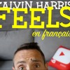 Calvin Harris ft. Pharrell Williams Katy Perry - Feels (french cover)