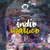 BTMFD080 - Vegas - Indio Maluco (Jeef Gustavo Unnoficial Remix)