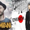 Garmiani - Fogo Vs Eminem - The Real Slim (Edition Special B3CAR Mashup)