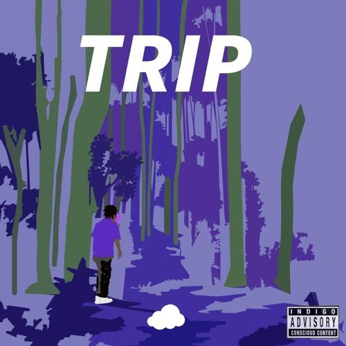 Trip (Prod. elijah who)
