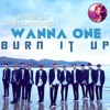 [3D MUSIC] WANNA ONE - BURN IT UP