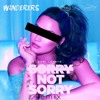 Sorry Not Sorry (Wanderers & AKSY Remix)