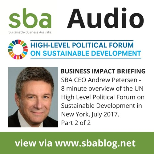 Business and the High Level Political Forum on SDG