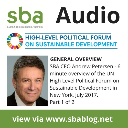 Quick overview of the High Level Political Forum in New York on SDG