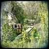 Download Jackie O. Bar Berlin: Botanic Lotusland Mp3
