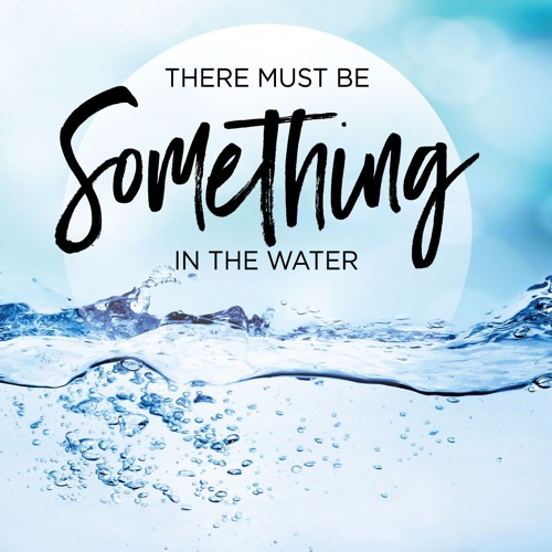 There S Something In The Water 2019 Imdb 7