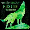 Irish Wolf Fusion - Tech House Music Mix 2