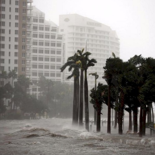 WSGS Flashback: Florida Hurricane